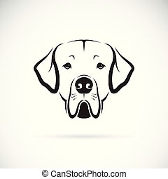 Vector of Great Dane dog head on white background. Pet....