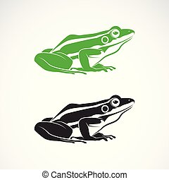 Vector of green frogs and black frog on white background. Amphibian. Animal. Frog Icon or logo. Easy editable layered vector illustration.