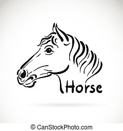 Vector of hand sketch a horse head on a white background. Animal design.