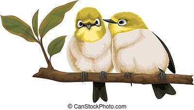 Vector of lovebirds on branch. - Vector illustration of...