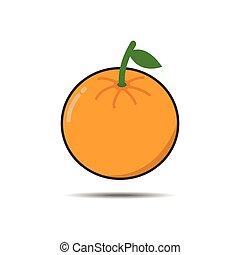 vector of orange fruit