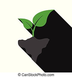 Vector of plant with long shadow on white background