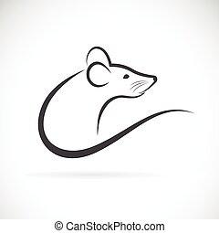 Vector of rat design.