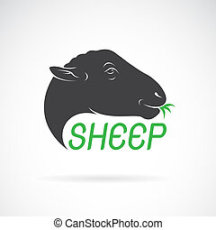 Vector of sheep head design on white background. Wild...