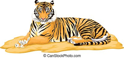 Vector of tiger.