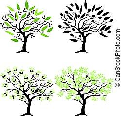 olive tree - vector olive tree set