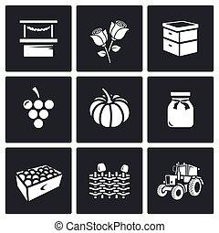 vector, omheining, bijenkorf, wicker, markt, tractor.,...