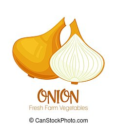 Vector onion isolated on white background.Vegetable illustration for farm market menu. Healthy food design poster. Cartoon style vector illustration