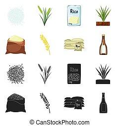 vector, oogst, set, illustration., liggen, ontwerp, icon., ecologisch, het koken