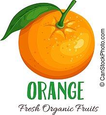 Vector orange illustration