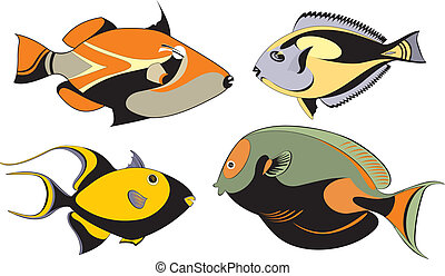 Vector original decorative fish set