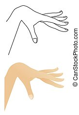Vector outline of the hand