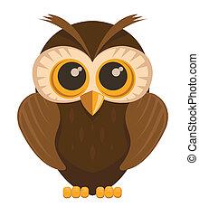 Vector owl bird, isolated on white background