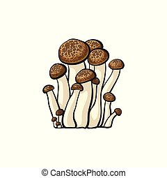Vector oyster mushrooms icon