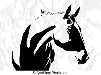 vector, paarde
