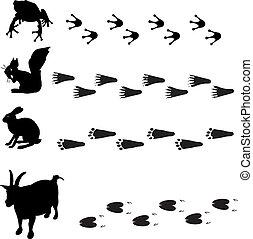 rabbit tracks clipart - Clip Art Library