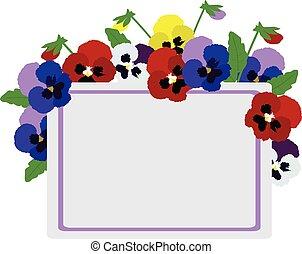 pansies card - vector pansies card