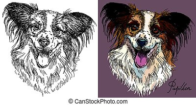 Vector Papillon dog in black and white and colorful - Vector...