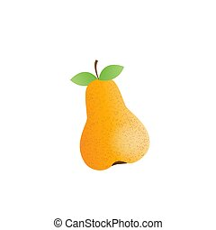 vector pear illustration, fresh fruit - organic food