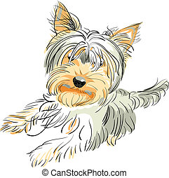 color sketch Yorkshire terrier red and black stands on its hind legs