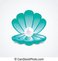 vector, perla, sea-green, cáscara, dentro