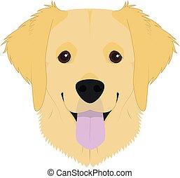 vector, perro cobrador, aislado, blanco, fondo dorado, perro, ilustración