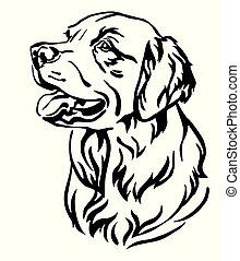 vector, perro cobrador, decorativo, retrato, dorado, perro, ilustración