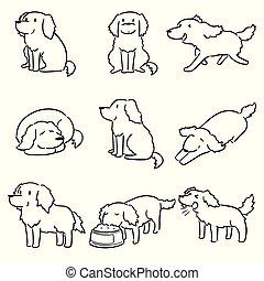 vector, perro cobrador, dorado, conjunto, perro