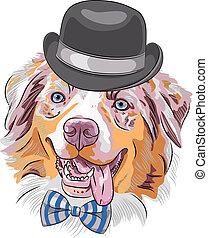 vector, perro, hipster, caricatura, pastor australiano