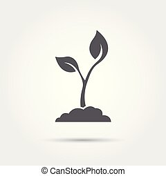 vector, pictogram, zaad, kiemplant, illustratie, silhouette., proces
