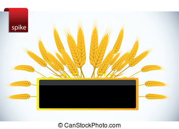 Vector picture of wheat