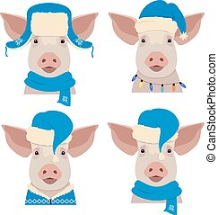 Vector pig head in winter blue new year clothing