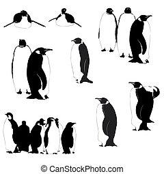 vector, pingüino, siluetas, en, el, blanco