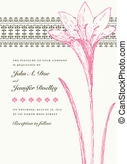 Vector Pink Lily Background and Frame - Vector ornate floral...