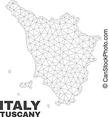 Vector Polygonal Mesh Tuscany Region Map