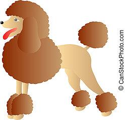 poodle - vector poodle