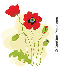 Vector poppies isolated on a white background