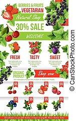 Vector poster of fresh garden berries market sale