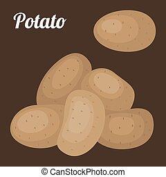 Vector potato, flat design