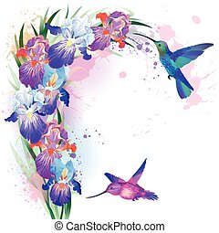 Vector print with Iris flowers and hummingbirds