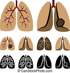 vector, pulmón, humano, cáncer, iconos