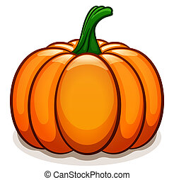 Vector pumpkin on white background