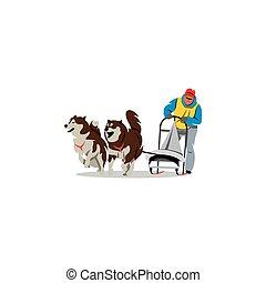vector, racing., illustration., vaya trineo perro
