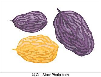 Vector raisins, Dodo collection - Raisin. A vector...