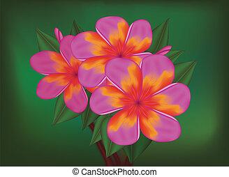 vector, rama, de, tropical, rosa florece