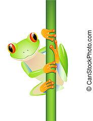 vector, rana, árbol, verde