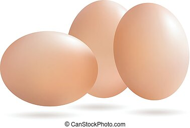 Vector Realistic eggs with drop shadow isolated on white background.