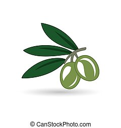 Vector realistic illustration of black and green olives branch isolated on white background