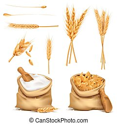 Vector realistic set cereals 3d icon