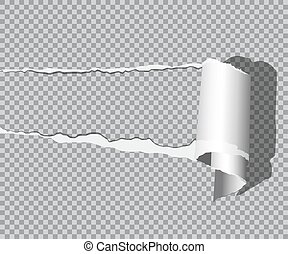 Vector realistic torn paper with shadow isolated on transparent background.